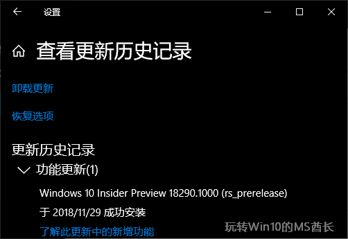 Win10 18290 ISO镜像下载